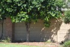 Albert Park VIC Barrier wall fencing 5
