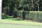 Albert Park VIC Wire fencing 15